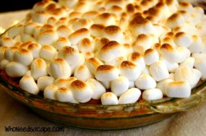 Bring your favorite outdoor treat indoors with tasty Smores Pie. Easy to make, you'll love the flavors while enjoying this dessert inside.
