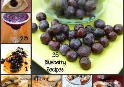 35 Blueberry Recipes