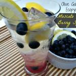 Olive Garden's {copycat} Moscato Citrus Berry Splash