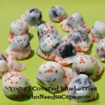 Red White and Blueberries (Yogurt Covered Blueberries)