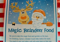 Bring the spirit of Christmas to life with some fun Magic Reindeer Food! Cute project for preschoolers, they'll love the magic!