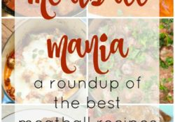 Meatball Mania a Roundup of Meatball Recipes from beef, chicken, pork, and turkey there's a recipe for every taste. Perfect for holiday parties & more!