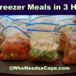 30 Summer Freezer Meals in 3 Hours