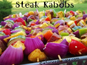 steak kabobs 3