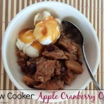 Slow Cooker Apple Cranberry Crisp | Who Needs A Cape?
