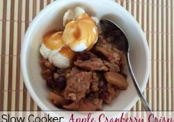 Slow Cooker Apple Cranberry Crisp | Who Needs A Cape?