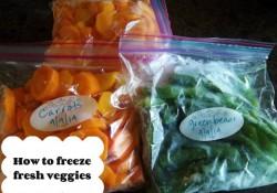How to Freeze Fresh Veggies