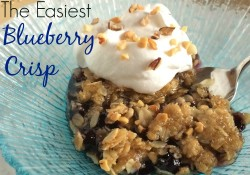 The Easiest Blueberry Crisp | Who Needs A Cape?