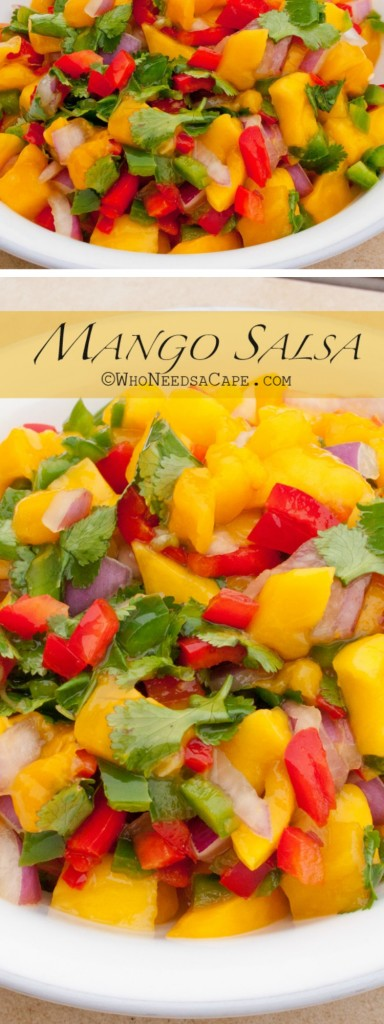 A fresh, sweet and spicy dip, Mango Salsa can be eaten on its own or accompanying so many different recipes. Perfect for Cinco de Mayo.