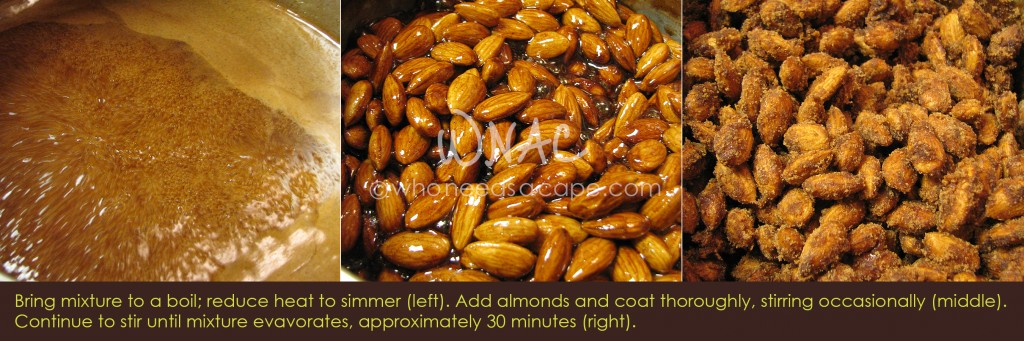 Cinnamon Candied Almonds   Who Needs A Cape?