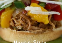 Slow Cooker Mango Salsa Pulled Pork