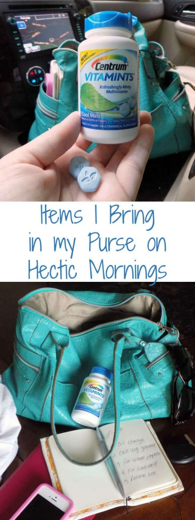 Find out what Items I Bring in my Purse on Hectic Mornings that keep me organized while away from home. One can never be too prepared on busy days.