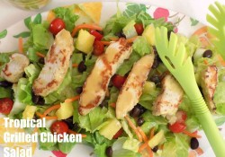 Tropical Grilled Chicken Salad