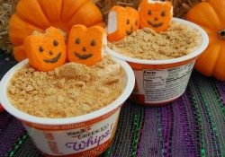 Make these easy and delicious Pumpkin Patch Yogurt Snacks for your kids. Great seasonal snack that will fill them up! Perfect after school snack too.