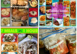 5 Sets of Freezer Meals