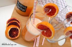 Boozy Citrus Spritzer 2
