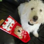 A Dog's Christmas